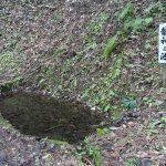 石川県河北郡津幡町の三輪神社に龍神之池があった
